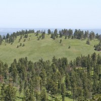 Bear Lodge - Wyoming, USA: Bull Hill. The REE deposit is the bottom portion of the hill.