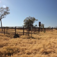 Fencing dating back to the site's use as a cattle station, at the Nolans Project, Northern Territory, Australia.